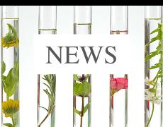 News Blog für Naturkosmetik