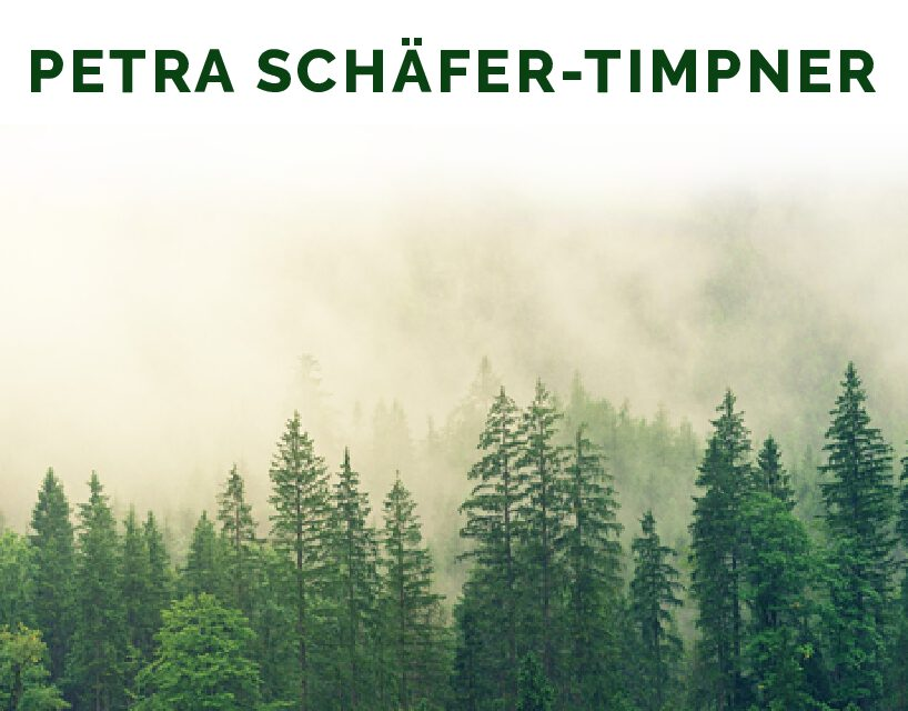 Petra Schäfer-Timpner